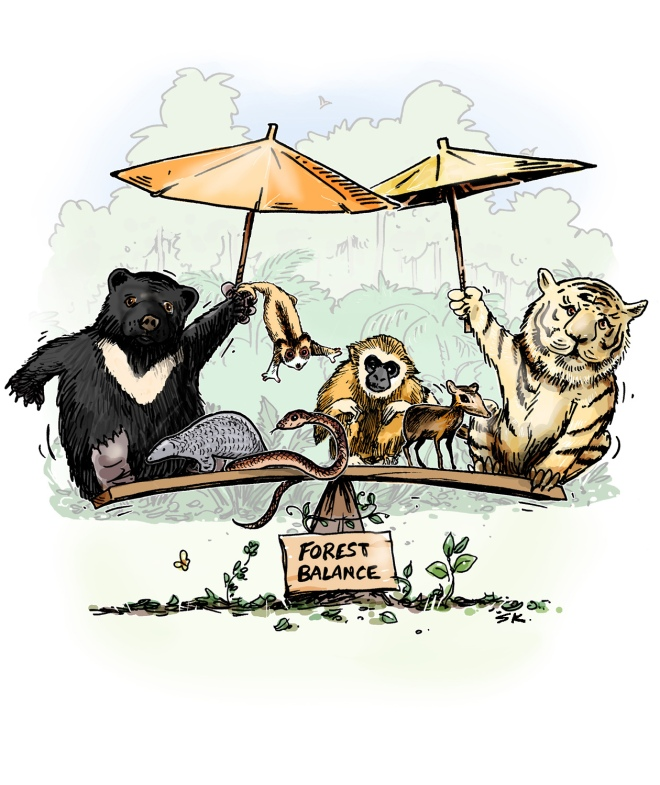 Umbrellas pic