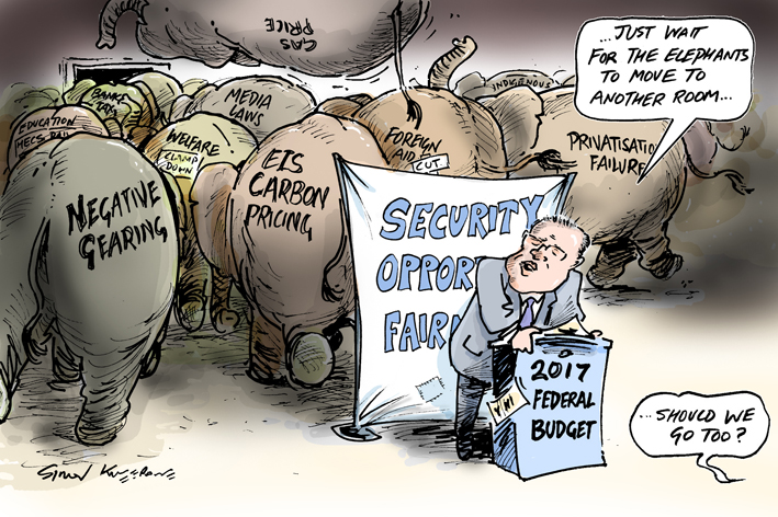 Budget 2017 LR cartoon.jpg