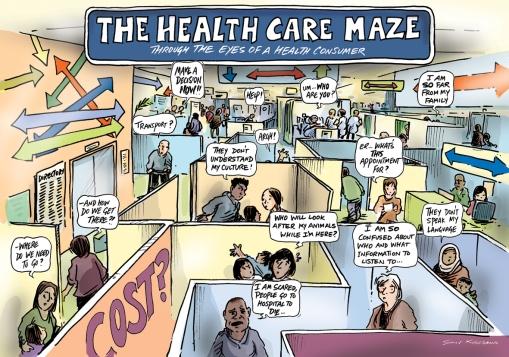 Health Care maze LR pic.jpg