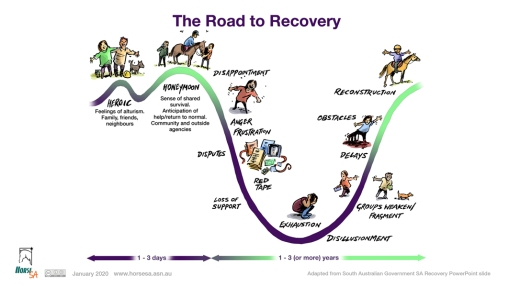 Road to recovery LR pic.jpg