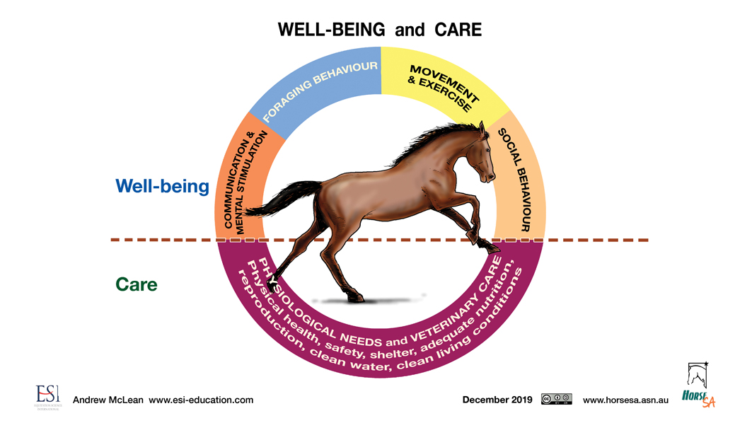 Horse Welfare - circle diagram LR